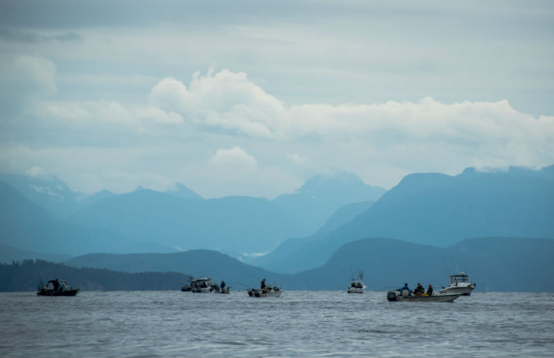 fishing boats off Vancouver Island